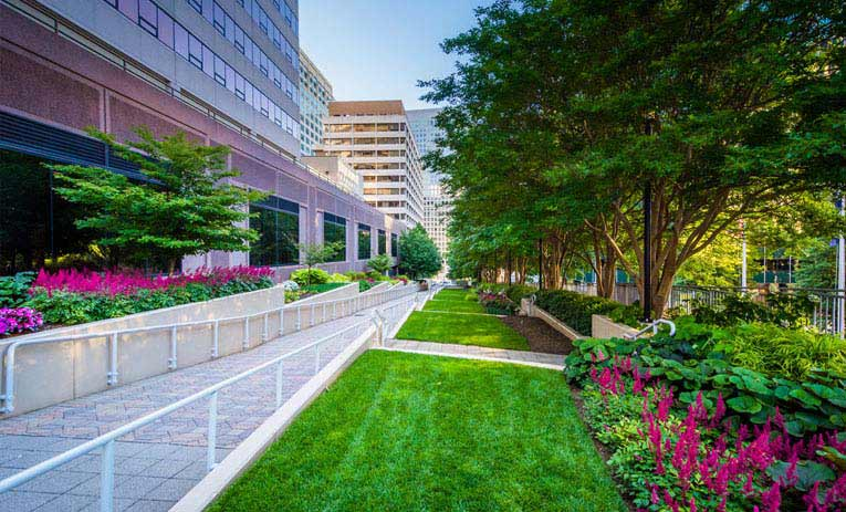 different commercial landscaping services